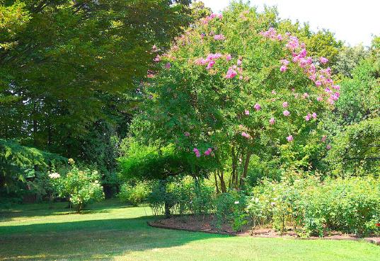 04-il-giardino
